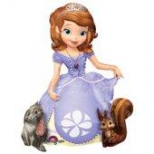 middle-middle-color-center-center-0-0-0--1480864657.8521 воздушный шар принцесса софия