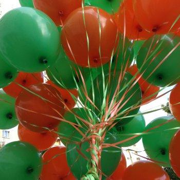 middle-middle-color-center-center-0-0-0-1475862237.1091 воздушные шары 100 штук купить
