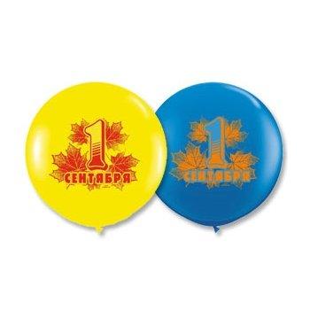 """middle-middle-color-center-center-0-0-0-1502268645.5741 SharikMarket.online - воздушные шары Воздушные шары к 1 сентября Большие шары """"1 сентября"""""""
