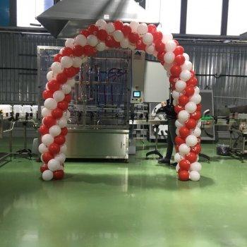 middle-middle-color-center-center-0-0-0-1518785805.8801 арка из воздушных шаров с логотипом компании