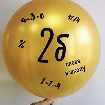 middle-middle-color-center-center-0-0-0-1524085134.9758 Большие шары на выпускной